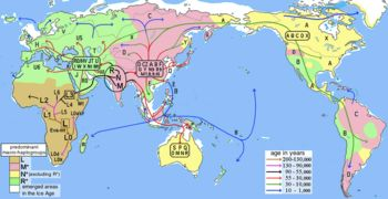 Human migrations and mitochondrial haplogroups - Human mitochondrial DNA haplogroup - Wikipedia