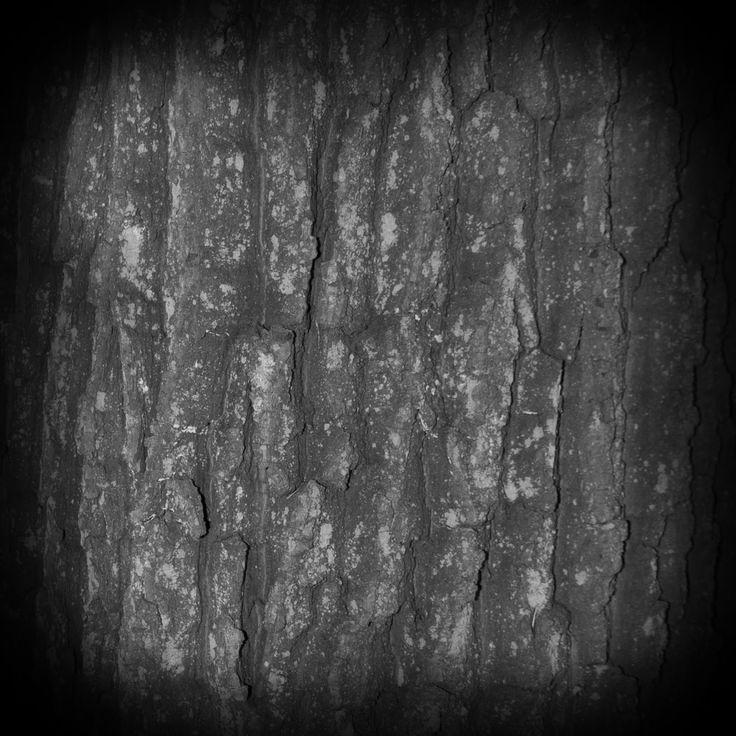 zbrush alpha texture - Google 검색