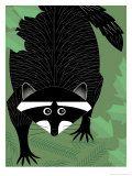A Raccoon Prints