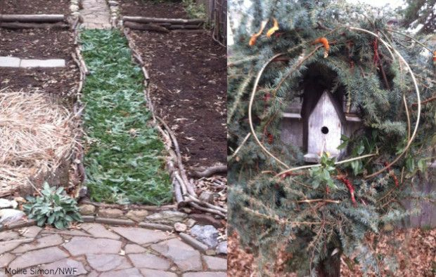 ideas for christmas tree in the garden