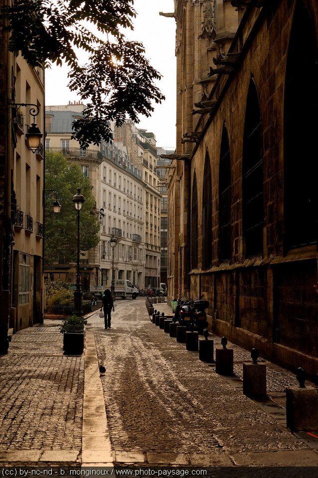 Paved street / Streets of Paris