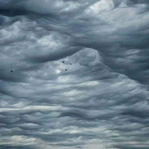 A hole in the clouds #clouds #birds #sky