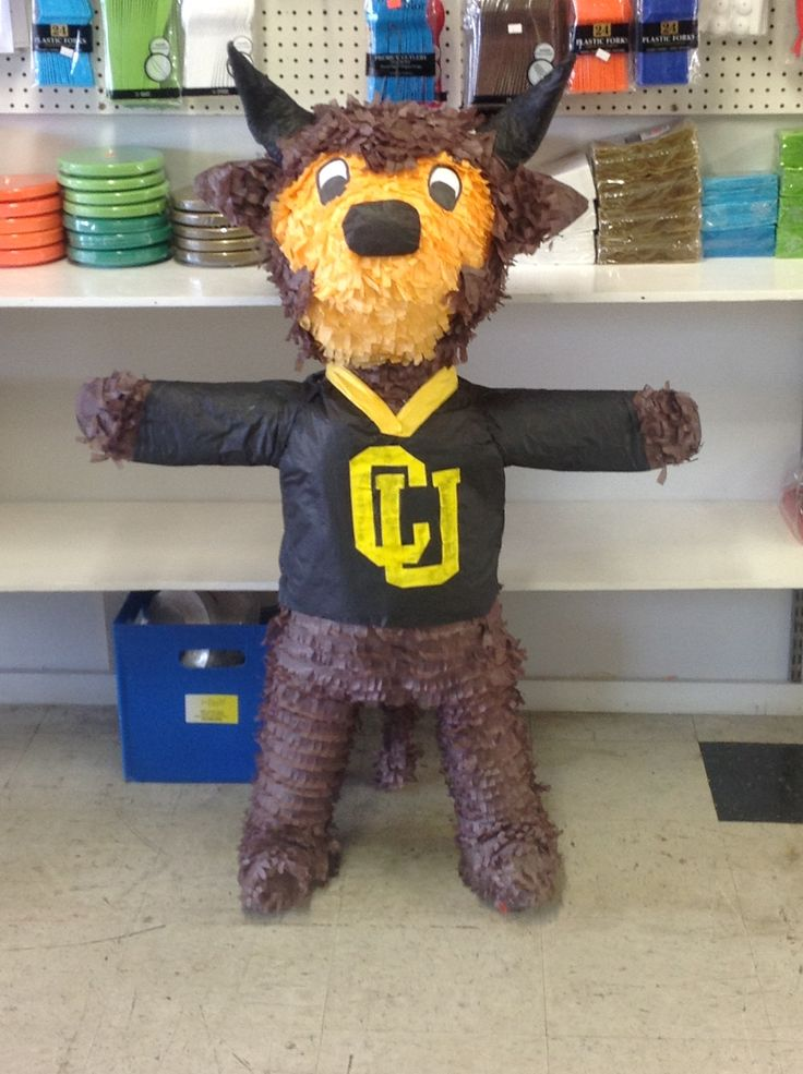 Ralphie the Buffalo- University of Colorado mascot piñata