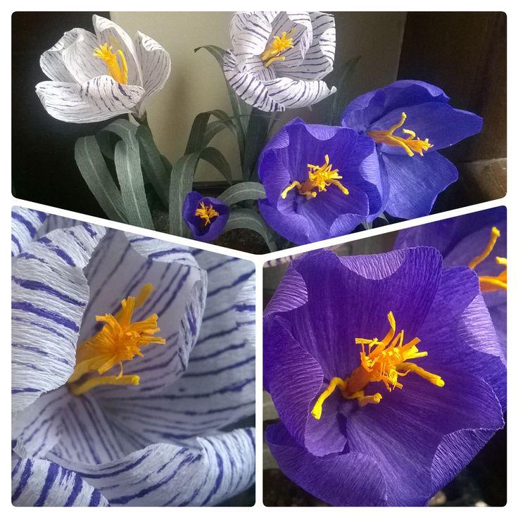 Crocus fiore dello zafferano. #fiori di carta crespa # crepe paper flowers #