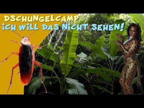RTL Dschungelcamp 2014: Liebe Kandidaten, ich will das nicht sehen!
