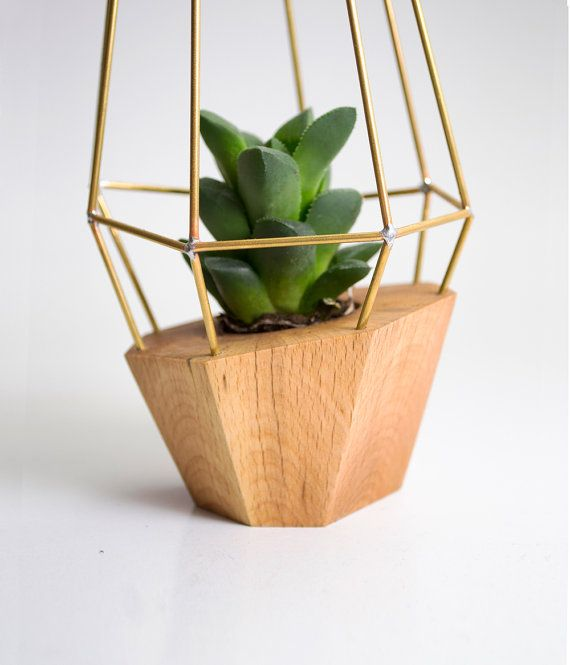 Best 25 wooden planters ideas on pinterest where to get for Wooden cactus planter