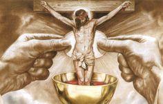 Hoy tuve la oportunidad de ir a una primera comunión. Así que la homilía del día de ahora era sobre la Santa Eucaristía y no de lo que correspondía en este domingo. Me encantó como detallo el Padre…