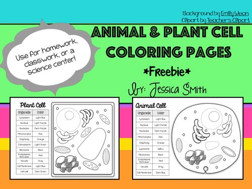 Animal and Plant Cell Coloring Pages. Students will love using the color coded chart to color each cell organelle to distinguish the different structures. Great as an introduction activity for students to learn the organelles. Could also be used as a homework assignment, science center, or extra credit!