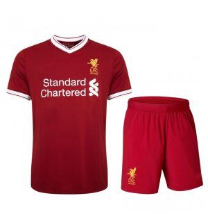 2017 Cheap Kit Liverpool FC Home Replica Suit [AFC352]