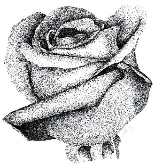 stippling | Stippled Rose by MoonlightRomance16