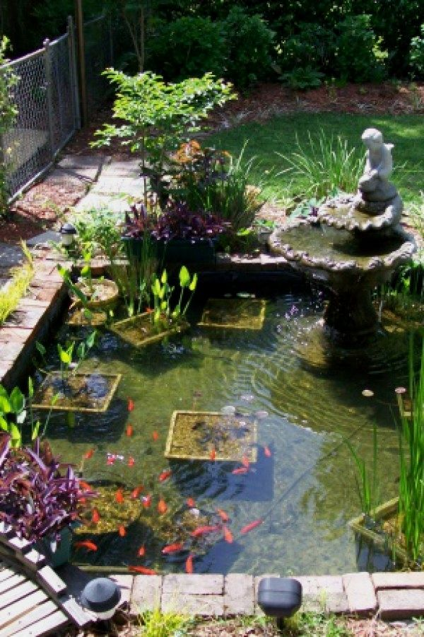 10 Easy Koi Pond Ideas You Can Build To Add Beauty Your Home Ponds Design No 12654 Garden Landscaping