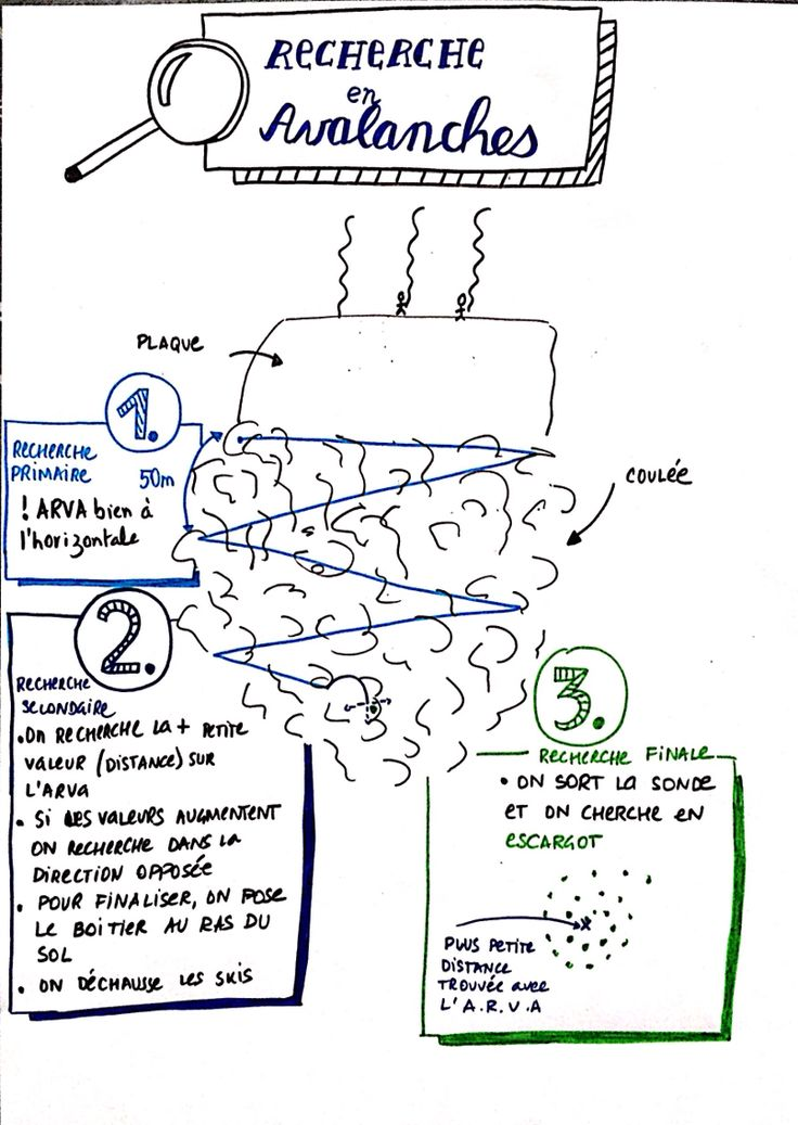 Utilisation du scribing pour résumer les connaissances partagées avec un guide de haute montagne