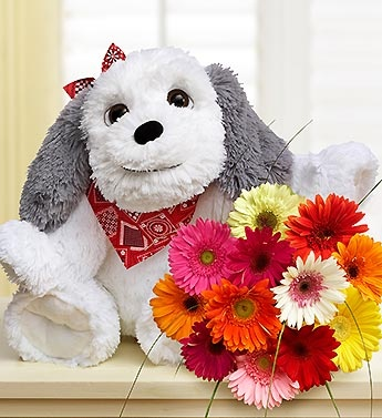 Sooo cute! It's National Puppy Day and ProFlowers has the special bouquets. Shop online and they send $10 to your cause through ShopAnthropy.  http://nonprofitshoppingmall.com/shop/retailer/530