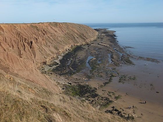 Filey Brigg - Carr Naze.JPG