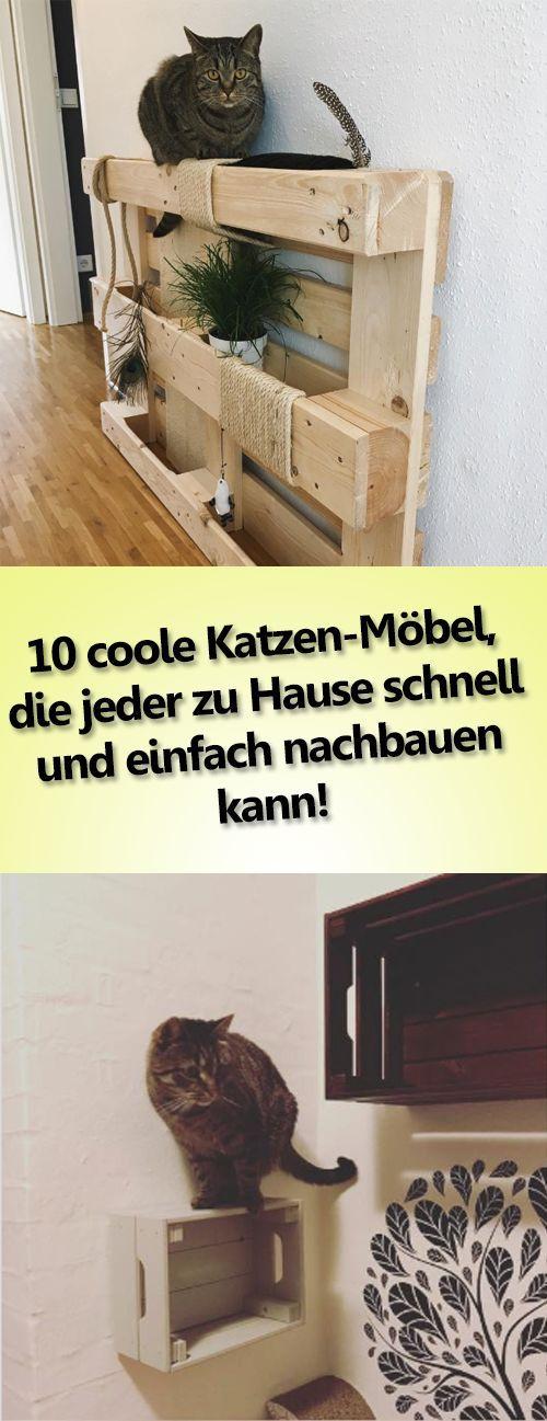 """""""Deine Katze wird es lieben!"""" – 10 coole Katzen-Möbel, die jeder zu Hause schnell und einfach nachbauen kann!"""