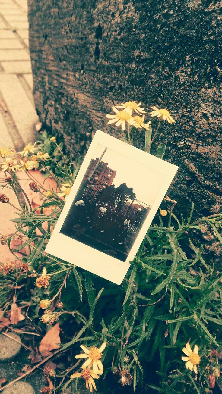 Ideas para tu foto de prom Tumblr