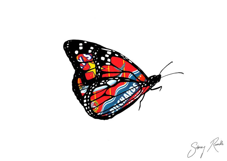 Monarch butterfly - ink drawing with a Lucky Star tin's label overlay. Stacey Rumble