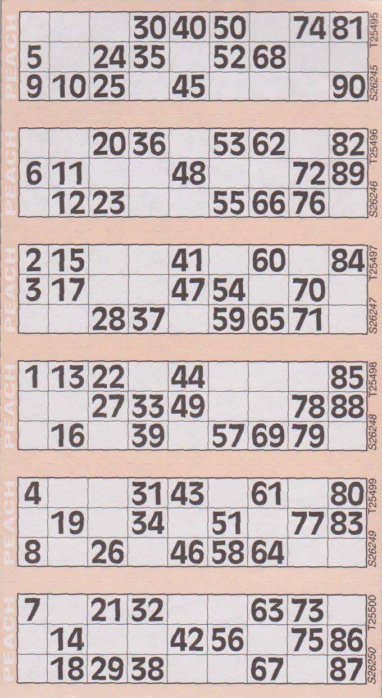 Bingo Card 1 90 Printable