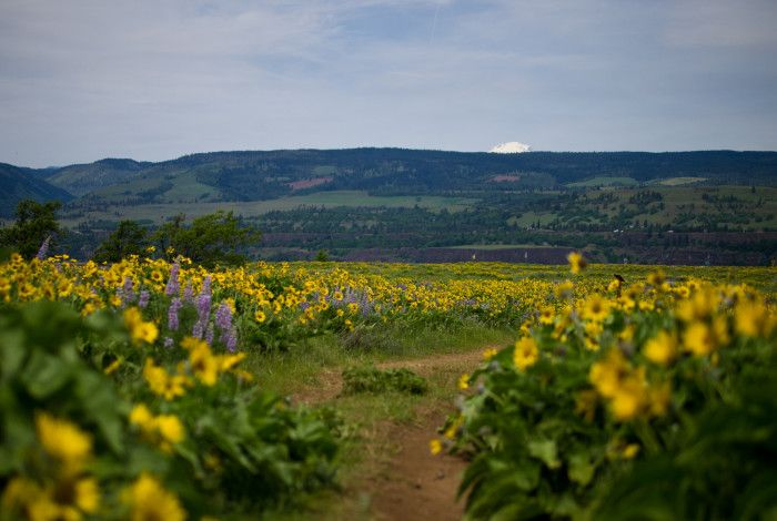 12. McCall Point Hike