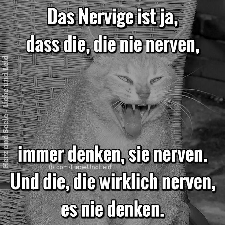 Das Nervige ist ja, dass die, die nie nerven...