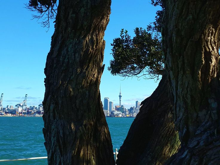 View of Auckland from Devonport, New Zealand (by KaVa)