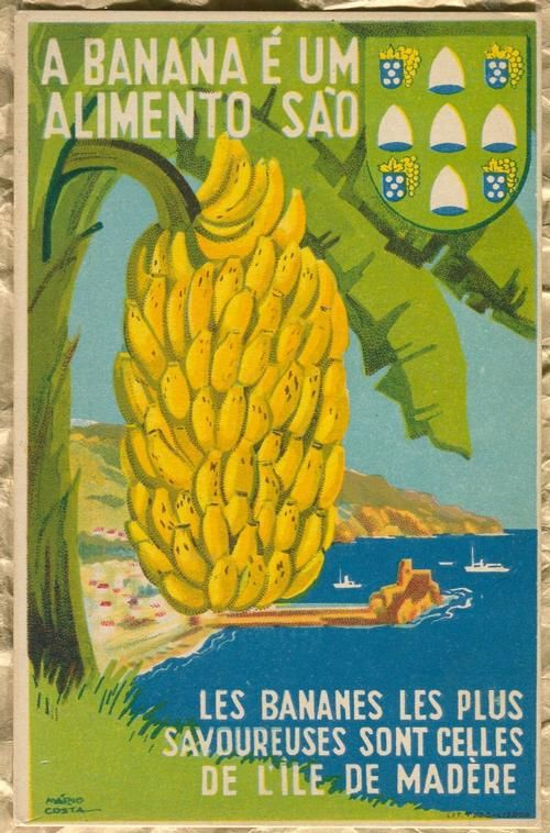 Les bananes les plus savoureuses sont celles de l'île de Madère -