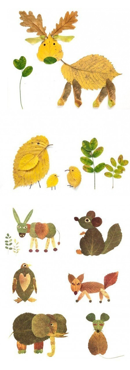 animals from leaves