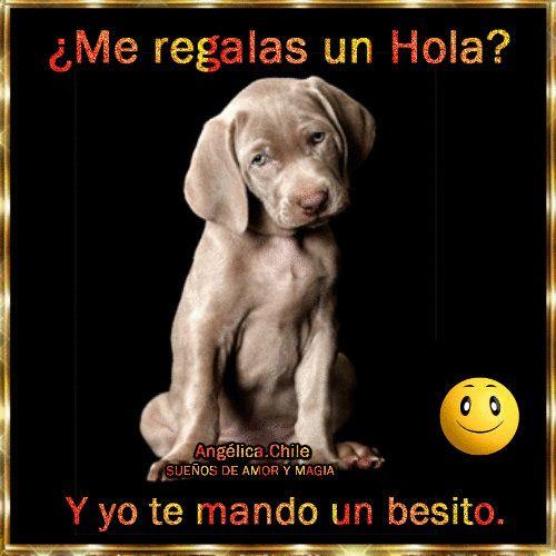 SUEÑOS DE AMOR Y MAGIA: ¿Me regalas un Hola?