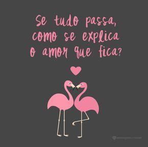 Se tudo passa como se explica o amor que fica? #mensagenscomamor #frases #amor #flamingos #pensamentos