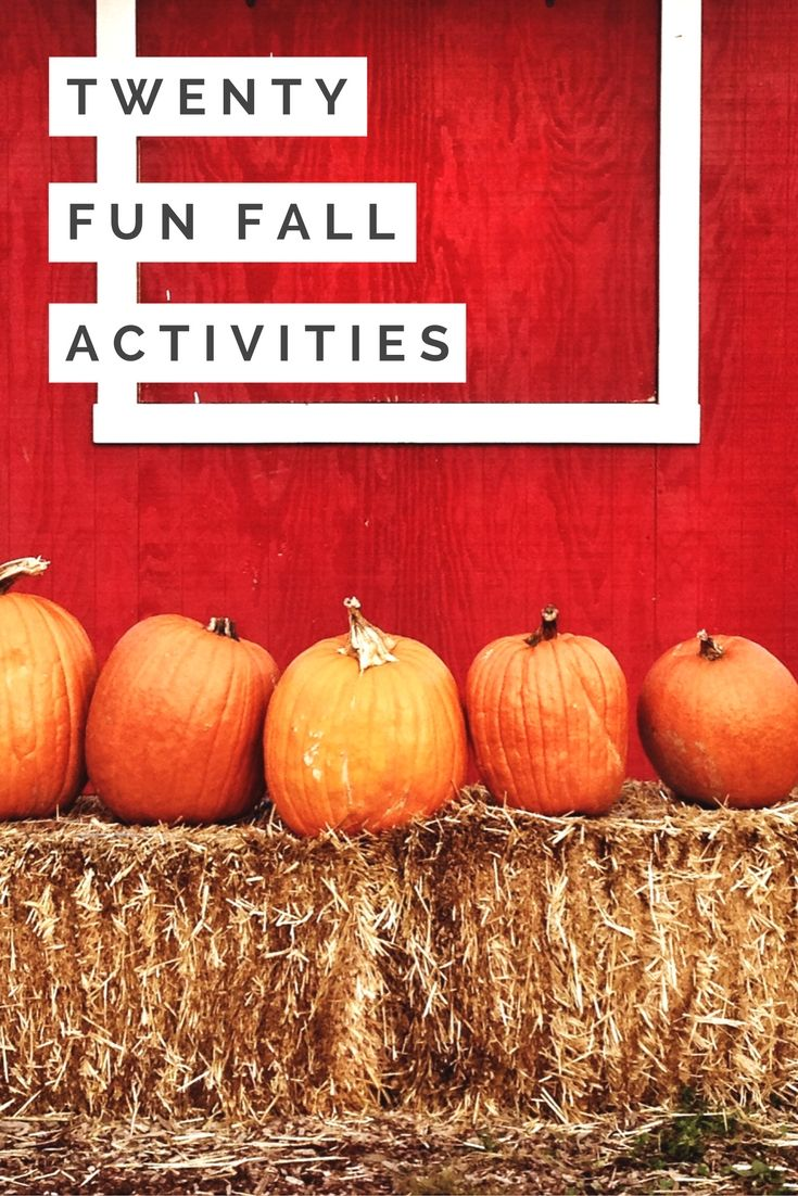 Twenty Fun Fall Activities Pumpkin Carving Ghost Tour Apple Picking Mulled Wine Cooking Classes Fall Leav Fun Fall Activities Fall Fun Autumn Activities