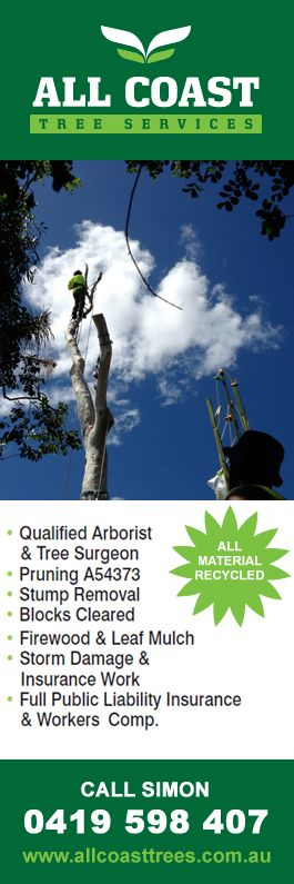 All Coast Tree Services - Tree & Stump Removal Services - Wollongong