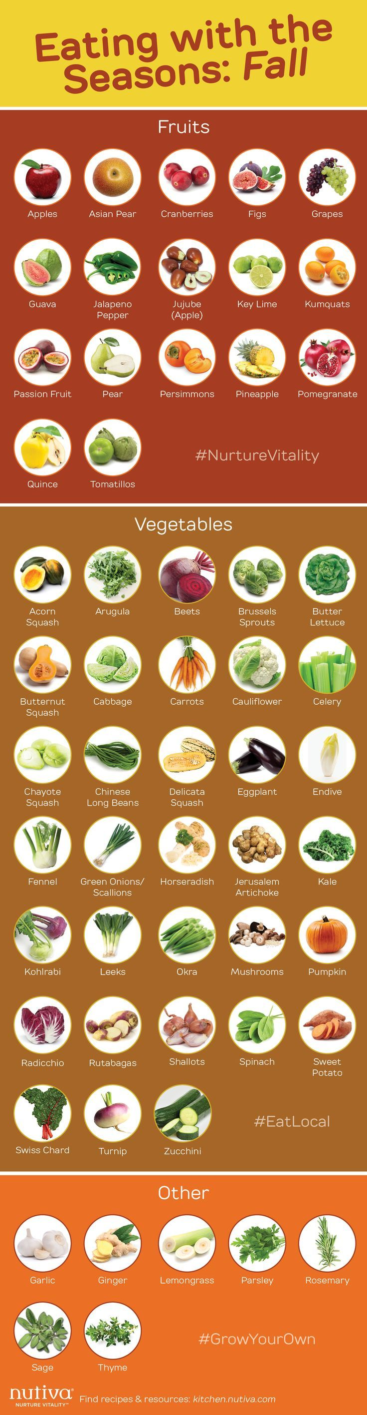Eating with the Seasons Fall graphic kitchen.nutiva Infographic