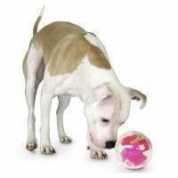 orbee-tuff-mazeeplanet-dog-raspberry-4494.jpg