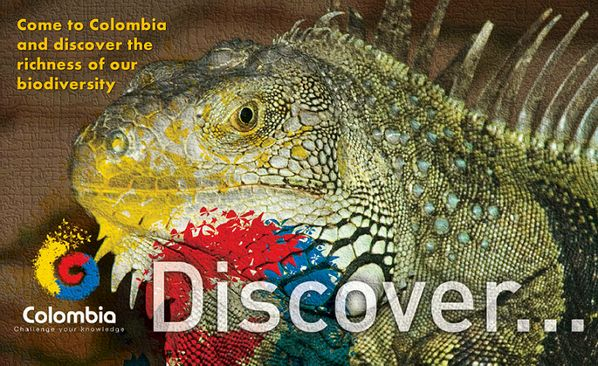 Come to Colombia and discover the richness of our biodiversity @BrandColombia @Redes Colombia @Colombia pic.twitter.com/YY7ozJSmuO @CCYK_COLOMBIA