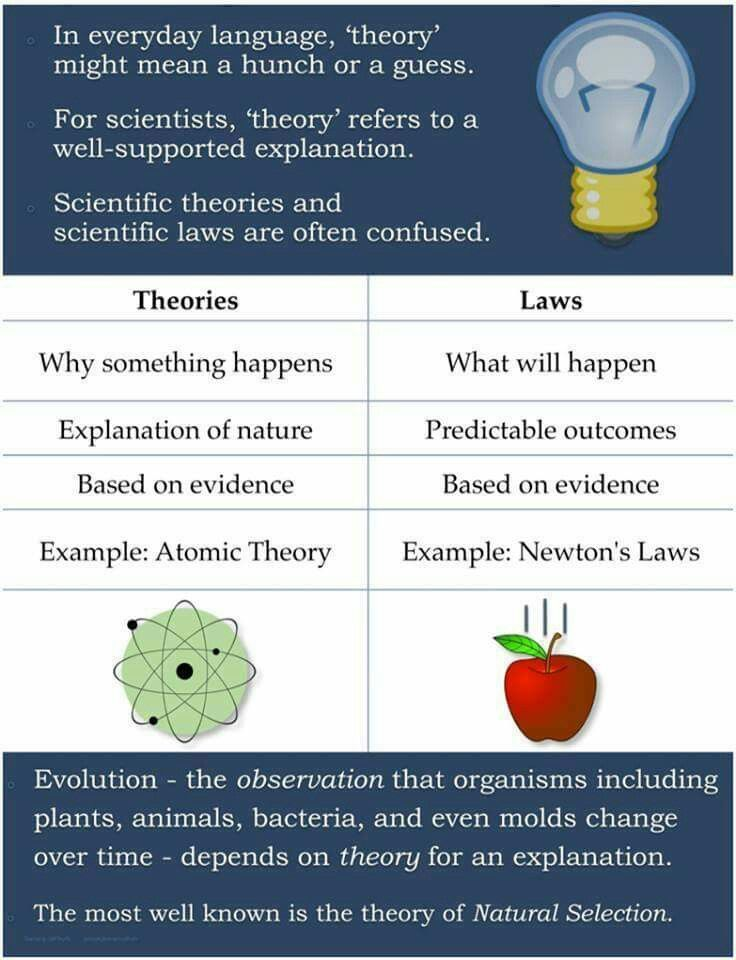 a scientific hypothesis can become a theory if