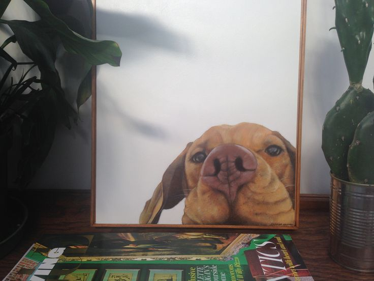 'Jed - Vizsla' Contemporary Oil on Board Painting by Charles Hannah Art & Design. Www.charleshannah.com