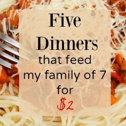 Here are 5 meals tasty meals that I serve to my entire family of 7 for $2. If your cash is low these 5 meals can be whipped together to help you get through a pinch without sacrificing good food.
