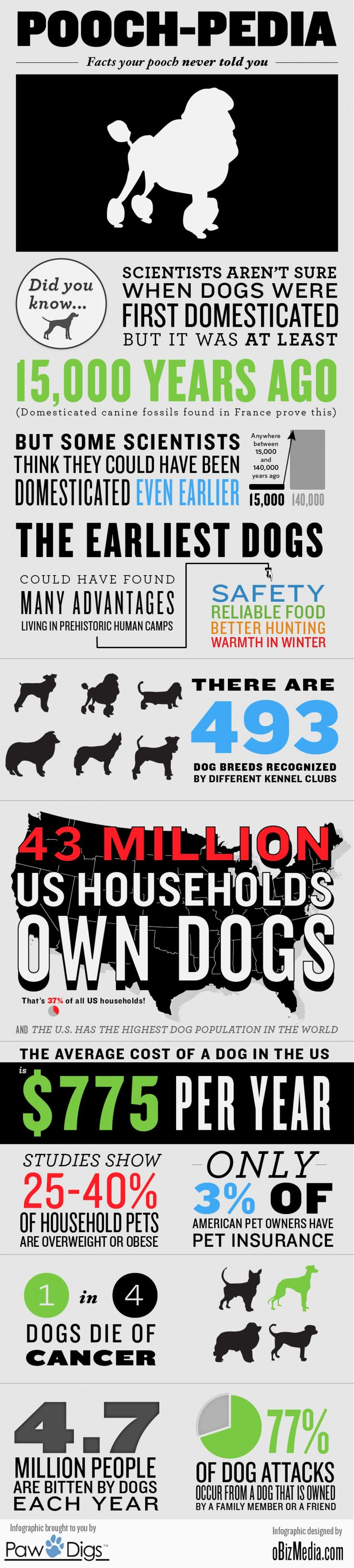 Pooch-pedia: Facts Your Pooch Never Told You #dogs