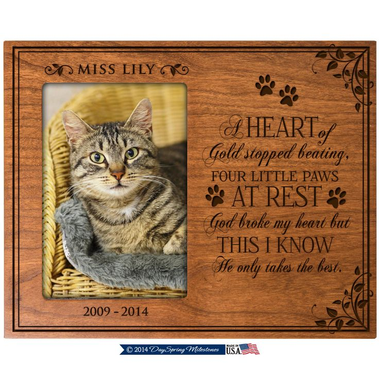 in loving memory gifts pet memorial gift pet memorial frame dog memorial gifts