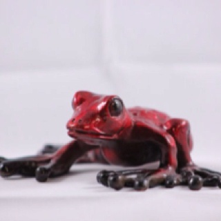A bronze red frog :): Bronze Red, Red Frogs