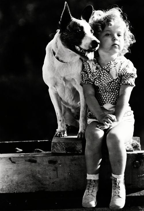 Shirley Temple with her best friend, Buster, 1933