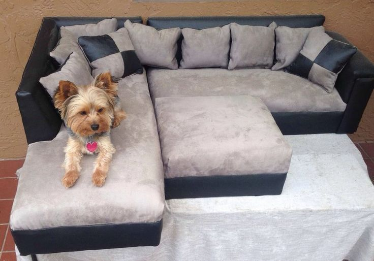Modern Dog Sofa Bed Ottoman Pet Couch Pillow Yorkie