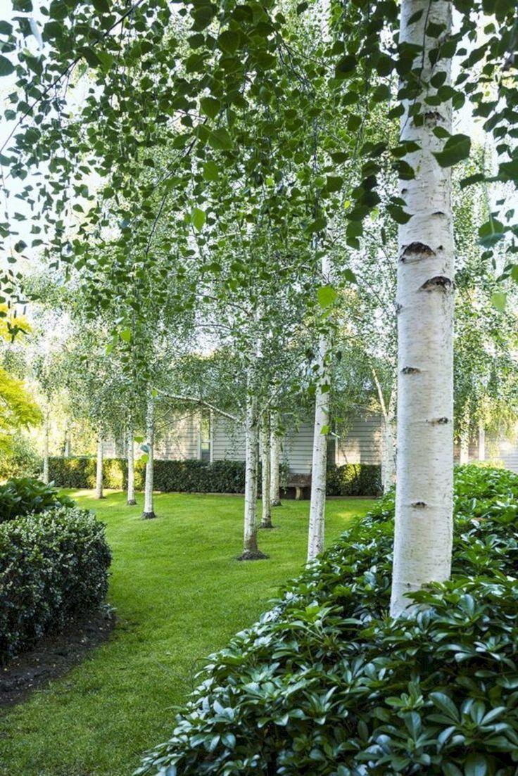 Du wirst lieben. 50 kreative Ideen für die Gartengestaltung und Gartengestaltun…