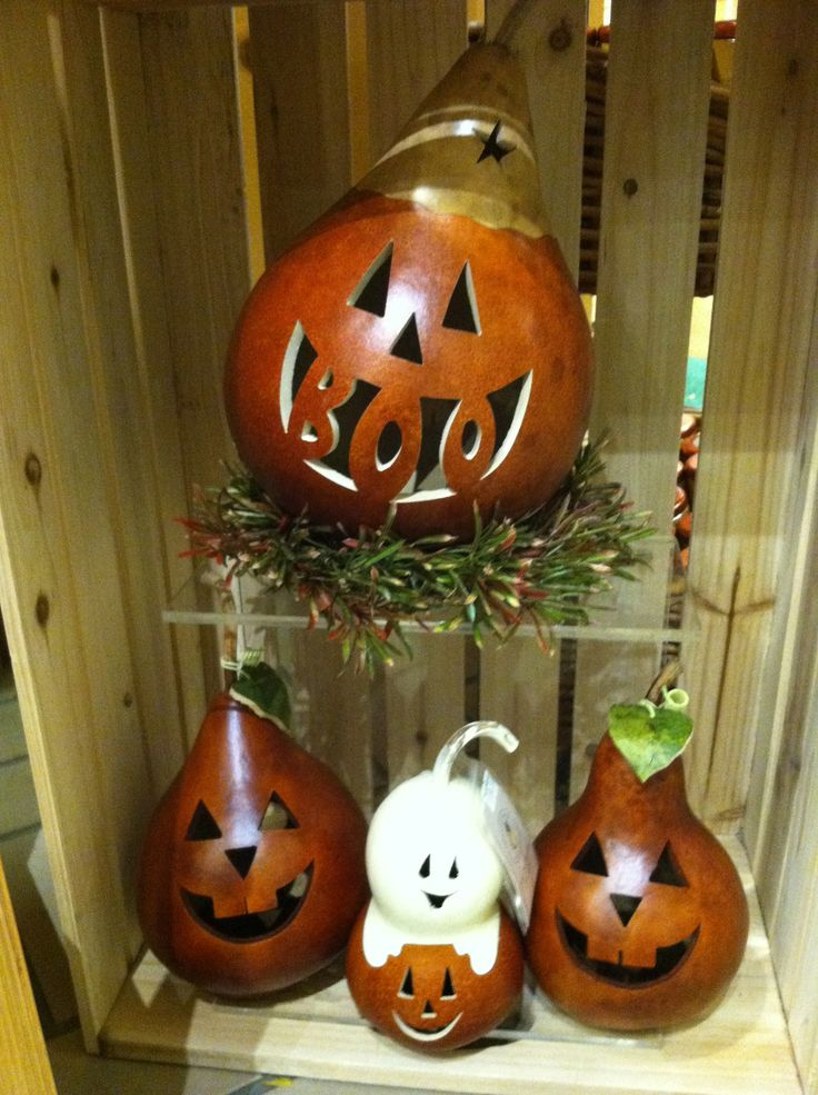 Boo! Halloween gourd with small little gourd friends. #HappyHalloween