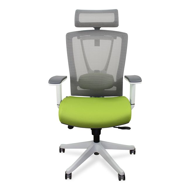 The Ultimate ErgoChair That Supports Your Lower Back And Promotes Good Posture