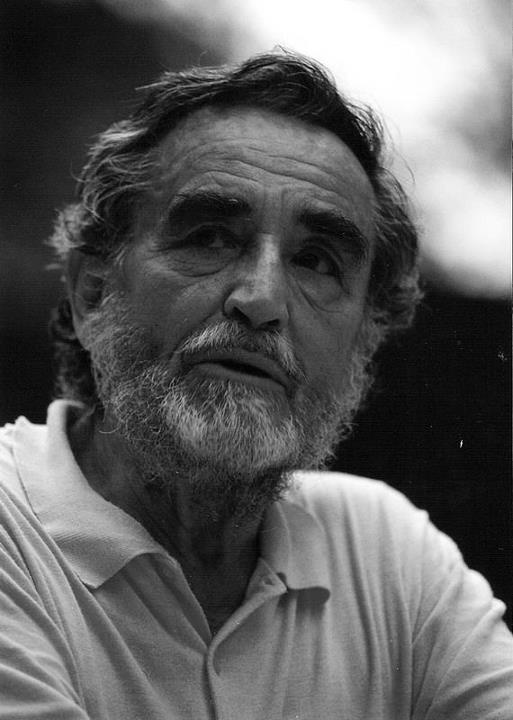 vittorio gassman, a great italian actor
