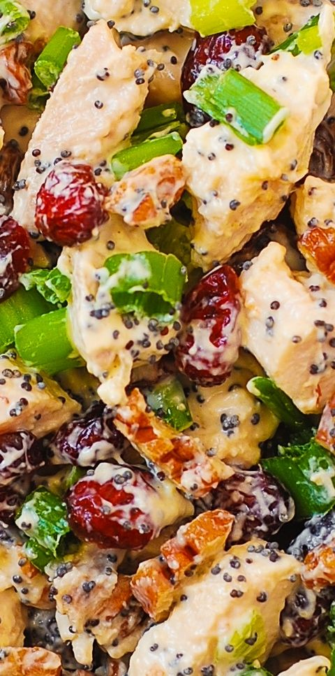 Cranberry Pecan Chicken Salad with Poppy Seed Dressing - also great for leftover Thanksgiving turkey meat! gluten free recipe