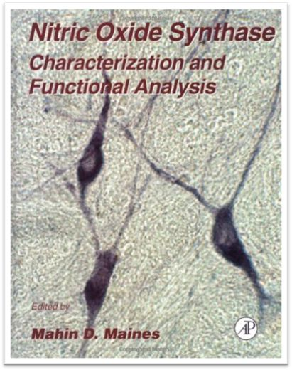 Methods in Neurosciences Vol.31 Nitric Oxide Synthase Characterization and…