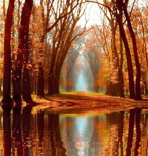 paysage photo infrarouge