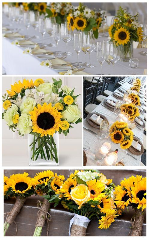 Sunflowers are symbolic of adoration. Also happiness and strength. Sunflowers turn their heads to the sun, which is the origin of their common name.: